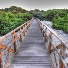 Bridge to the Beach - by Remon K.