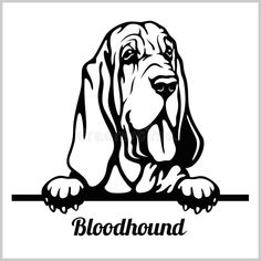 Pet Quotes Dog, Tattoo Catalog, Dog Silhouette, Cartoon Silhouette, Bloodhound Dogs, Pewter Art, Animal Templates, Paper Quilling Designs, Different Dogs