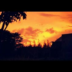 That orange sky