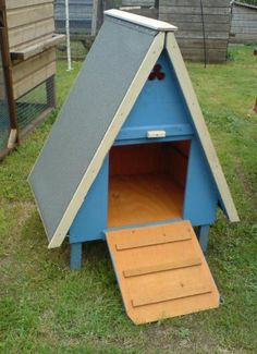 Duck Pens and Houses | Dreaming of Duck Houses