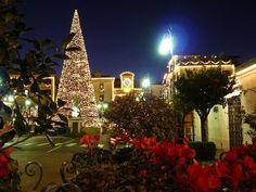 Christmas Sorrento Italy