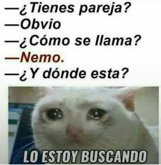 """Top LOL Memes En Espanol Memes That will make you laugh and funny for whole day.So scroll down and read out these """"Top LOL Memes En Espanol"""" and i'm sure these """"Top LOL Memes En Espanol"""" will make you laugh out loud. Funny Spanish Memes, Spanish Humor, Funny Jokes, Crazy Funny, Dating Humor, Stitch Disney, New Memes, Memes Humor, Frases Humor"""