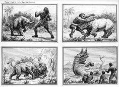 Storyboards , Ray Harryhausen