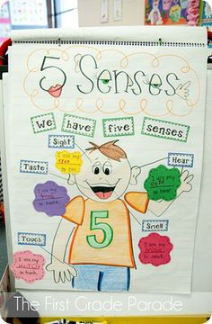 5 senses from First Grade Parade via Pencile Glue and Tying Shoes...