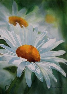 White Daisies Painting by Sharon Freeman - White Daisies Fine Art Prints and Posters for Sale Daisy Painting, Watercolour Painting, Watercolor Flowers, Painting & Drawing, Watercolors, Watercolor Texture, Arte Floral, Fine Art, Painting Inspiration