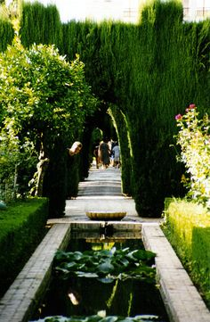 Alhambra - stunning!