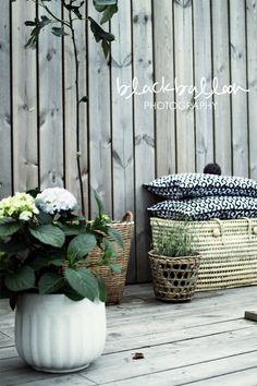 I K I Black balloon baskets