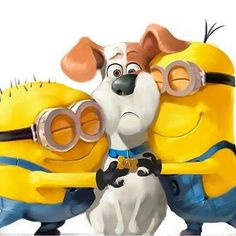 Official movie site for The Secret Life of Pets, starring Louis C., Eric Stonestreet and Kevin Hart. Watch the trailer here! In theaters, RealD and IMAX July 8 Minions Images, Emoji Images, Cute Minions, Minion Pictures, Minions Despicable Me, Minions Quotes, Minion Characters, Disney Characters, Fictional Characters