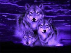 wolf pictures in fantasy White Wolf Hd Fantasy Pictures Dark Beautiful Wolves, Animals Beautiful, Cute Animals, Wolf Photos, Wolf Pictures, Anime Wolf, Tier Wolf, Wolf Hybrid, Native American Wolf