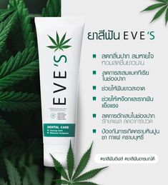 Eve's Hemp Seed Oil and Natural Whiteness Toothpaste is the toothpaste rich in Cannabidiol (CBD), helping to reduce the buildup of bacteria in the mouth. With 17 types of herbs, it helps clean thoroughly, helps whiten teeth, prevents tooth decay, strengthens gums and teeth, reduces bad breath, prevents plaque, tea, coffee, and cigarette stains, and promotes fresh breath all day long. Types Of Herbs, Bad Breath, Hemp Seeds, Teeth Cleaning, Dental Care, Teeth Whitening, Seed Oil, Decay, Tooth