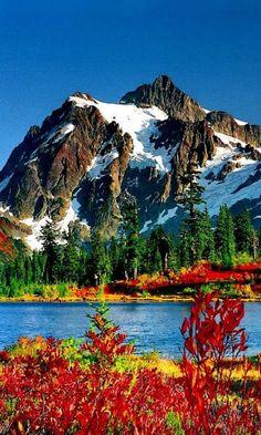 2745 Fantastiche Immagini Su Immagini Bellissime Natura Nel