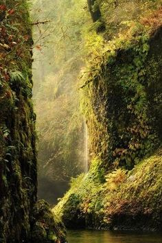 Columbia River Gorge, Oregon  photo via riyssa