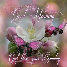 Blessed sunday morning quotes luxury good morning god bless your sunday sunday blessings Blessed Sunday Morning, Sunday Morning Quotes, Sunday Wishes, Good Morning Sister, Sunday Greetings, Happy Sunday Quotes, Sunday Love, Morning Blessings, Morning Prayers