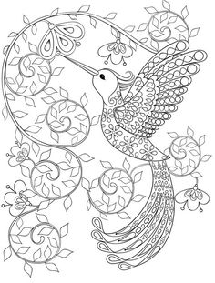 Hummingbird coloring pages for adults, free dwonloadable: