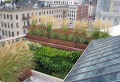 Roofs are not just for shingles.