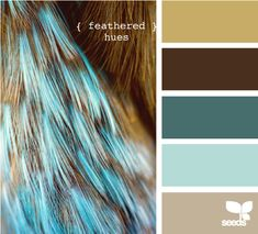 more feathered hues- Brava yarn in Fig, Umber Heather, Tidepool, Cornflower and Camel Hather.
