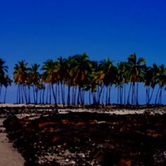 """""""Sacred Site"""" Pu'Uhonua on the Big Island of Hawaii'"""