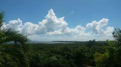 Ceiba, Base R