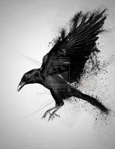 crow by death by affection digital