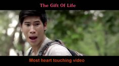 Best Sad Ads From Thailand 2016 #2 ✦ Heart Touching Thai Commercial that...