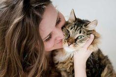 Cada gato é diferente e tem a sua própria personalidade, é importante ter isso em conta! #gatos #animais #pets