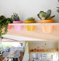 Pequeño jardín en un estante