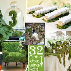 The Scrap Shoppe: 32 Crafts Ideas using Moss