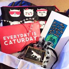 CatLadyBox: First-ever monthly subscription box for cat ladies! | Way overpriced, but if I'm ever rich, maybe I'll check it out.