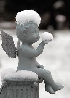 Snow kissed angel