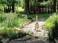 garden path | ... along as she follows the garden paths, here, in Hopalong Hollow