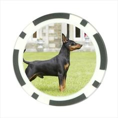 Miniature Pinscher Poker chip Guard. Keep your cards covered and safe with this high-gloss poker chip guard. The card guards are 40mm in diameter, 3mm thick and 12 gram weight. Chip guard comes with an acrylic air-title holder.   eBay!