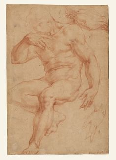 Studies of a Male Nude, a Drapery, and a Hand; Giorgio Vasari (Italian, 1511 - about 1555 - Red chalk; 36 x cm x 9 in. Figure Sketching, Figure Drawing, Ceiling Painting, Giorgio Vasari, Getty Museum, Art Institute Of Chicago, Italian Artist, Design Museum, Old Master