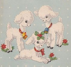 Adorable Little Baby Lamb, Vintage Christmas Greeting Card!