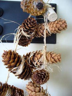 Pinecone Decor
