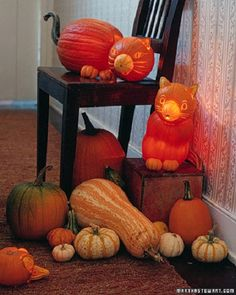 4. The Cat's Meow Pumpkin Carving Ideas...