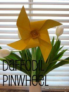 http://nurturestore.co.uk/st-davids-day-activities