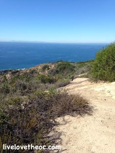 Badlands Park in Laguna Niguel offers the most incredible scenic views!  Check out these views.