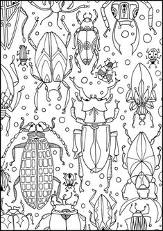 Käfer Colouring Pages, Coloring Books, Atelier D Art, Bug Art, Art Worksheets, Insect Art, Bugs And Insects, Art Club, Art Plastique