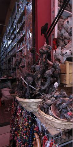 Llama fetuses in the Witches Market of La Paz, Bolivia