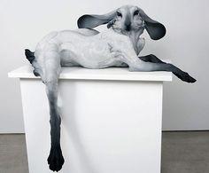 Beth Cavener Stichter's animal sculptures.
