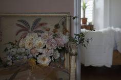 shooting roses - Blog