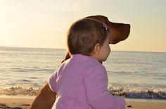 The Best Dog Breeds For Kids