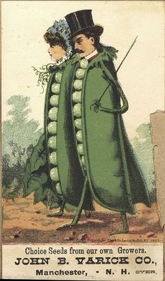 John B Varice Fine Seeds...very strange pea people!