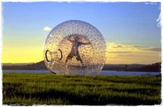 Go Zorbing (exploring the country side in basically a giant hamster ball) in New Zealand
