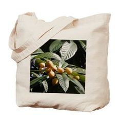 Loquats in the Ancient City Tote Bag>  Patty Weeks Old Florida Gifts