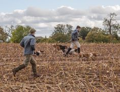 Sidelocks And Foxhounds