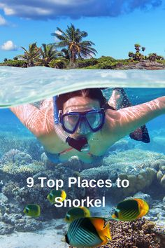 Dream Vacations, Vacation Trips, Vacation Spots, Aquarium, Beautiful Places To Travel, Beach Trip, Snorkeling, Travel Around The World, Travel Pictures