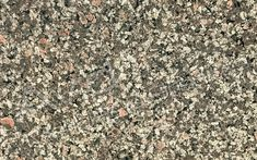 Apple Green Granite – Suppliers, Manufacturer & Exporter in India Granite Suppliers, Granite Flooring, How To Dry Basil, Herbs, Apple, Green, Apple Fruit, Herb, Spice