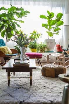 25 Unexpected Ways to Decorate With Plants via Brit + Co