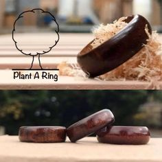 Wooden Rings, Plants, Wood Rings, Plant, Planets
